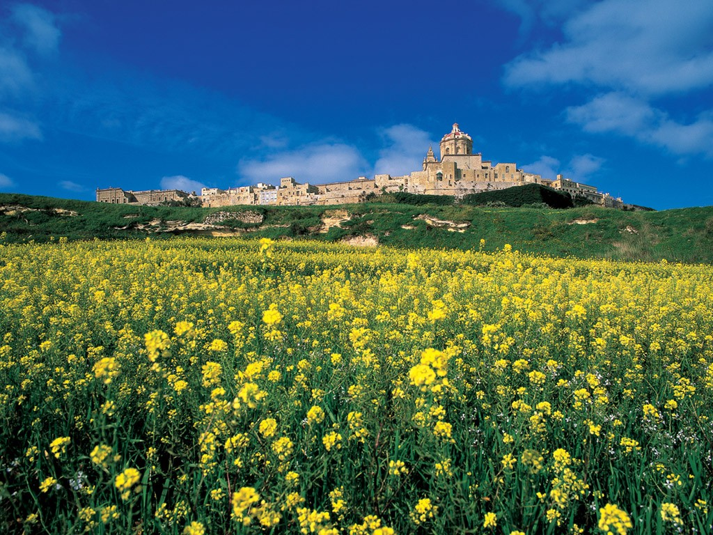 Mdina skyline from a distance in spring.