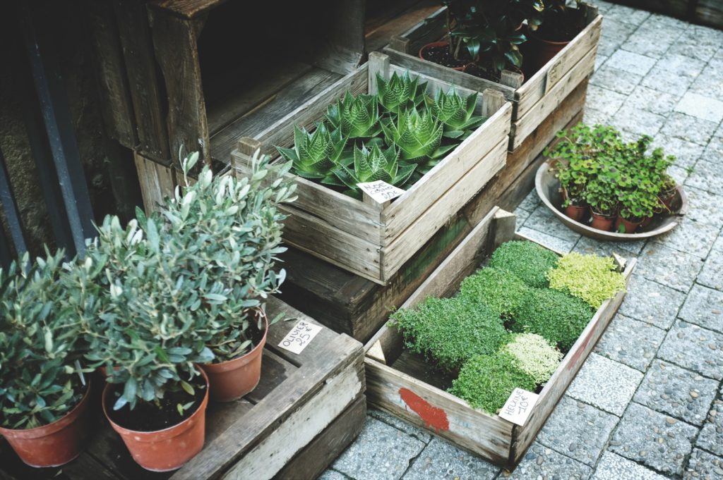 diy flower boxes